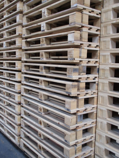 Restposten 800 x 1200 mm
